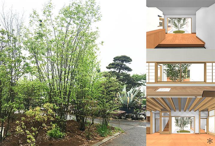 神奈川K邸33-庭木